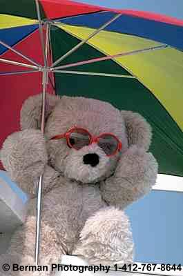 LifeguardBear